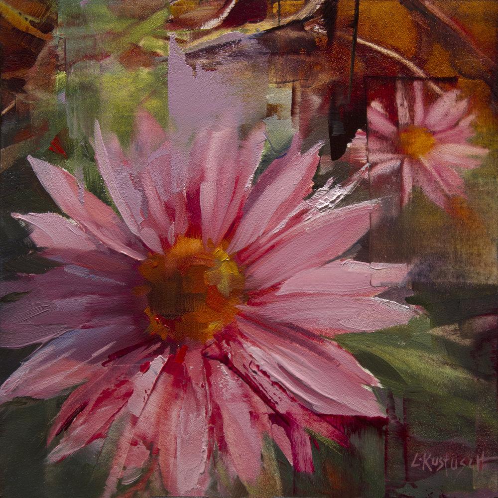 Echinacea Summer