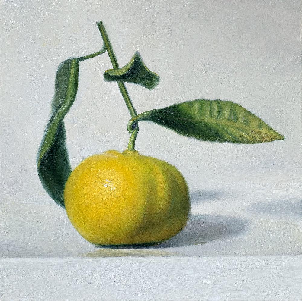 Citrus I