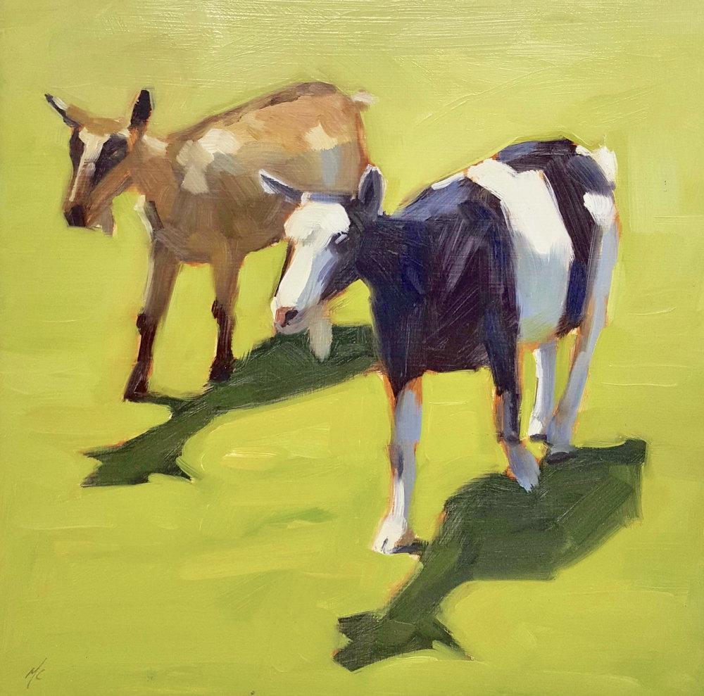 Harley Farm Goats