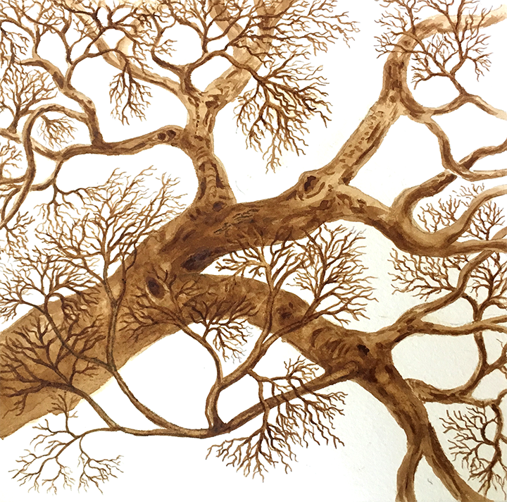 Tree branch painted with coffee
