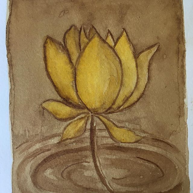 Painted with Turmeric and Coffee. Lotus rising out of the mud.