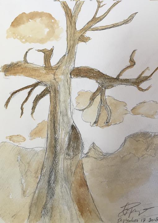 ed-tree.jpg