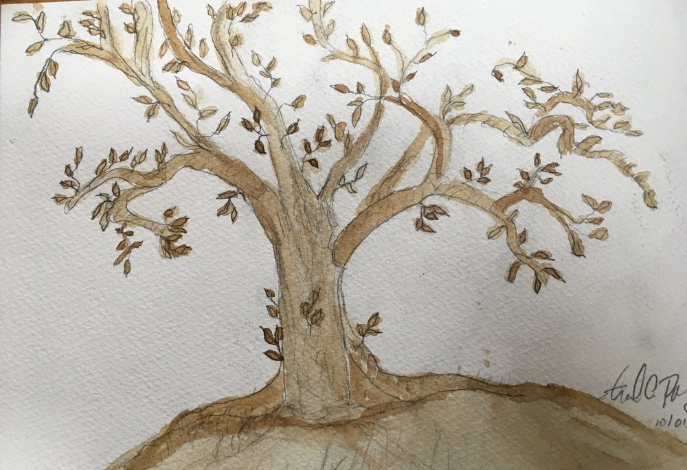 edtree-6.jpg