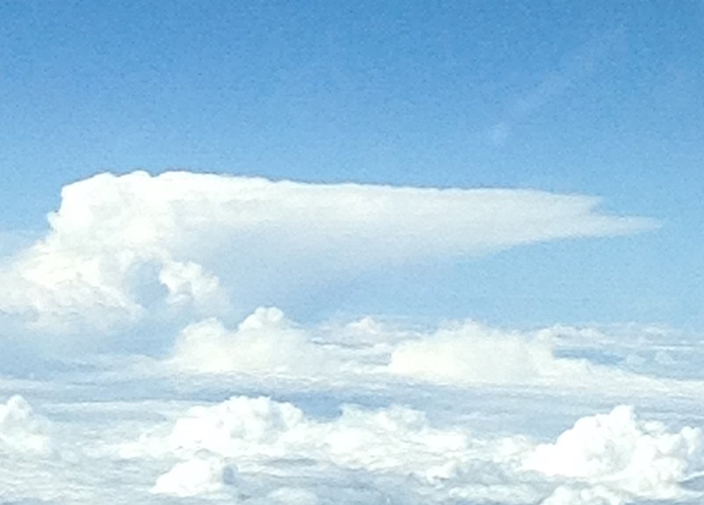 One can see the flattening effect as the rising air in the thunderstorm hits the tropopause. Hence the anvil. The term anvil stems from a blacksmith's anvil.