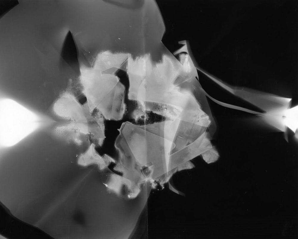 Photogram1_005WEB.jpg