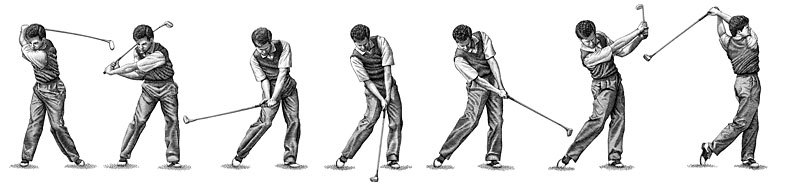 Golf Swing Stages