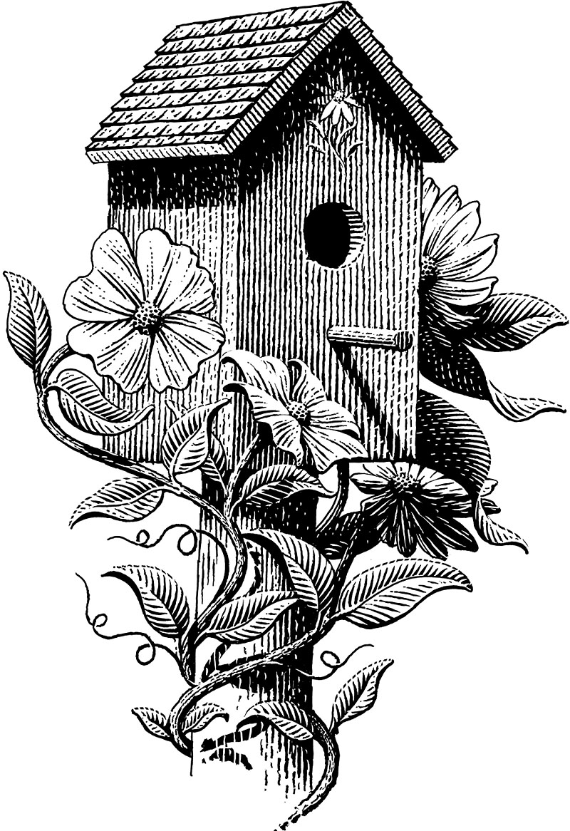 Birdhouse With Plants