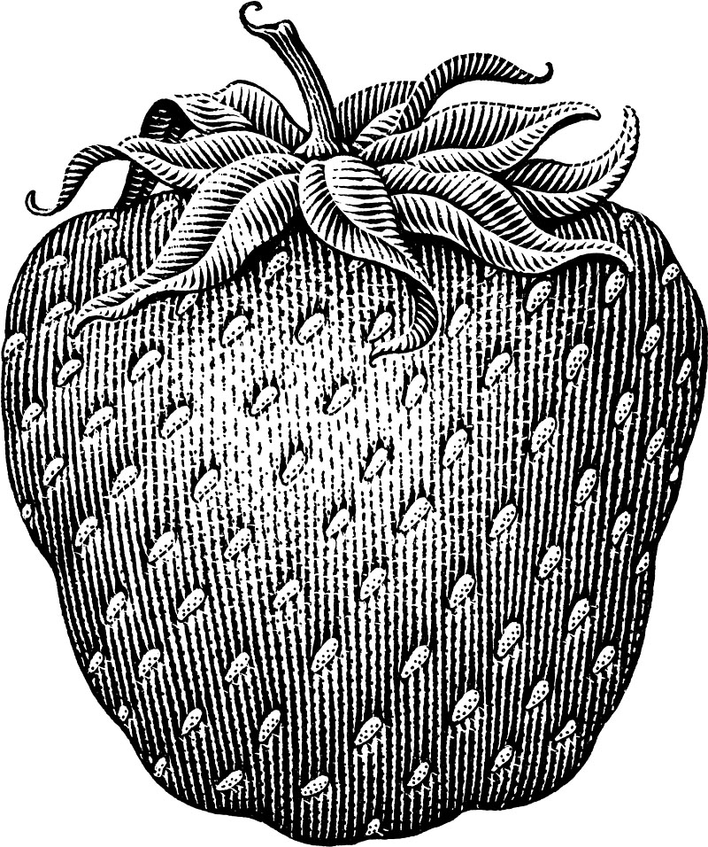 Plump Strawberry
