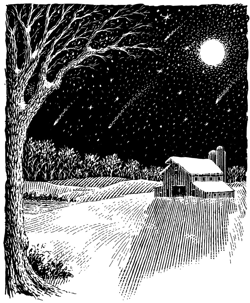 Night-time Winter Farm Scene