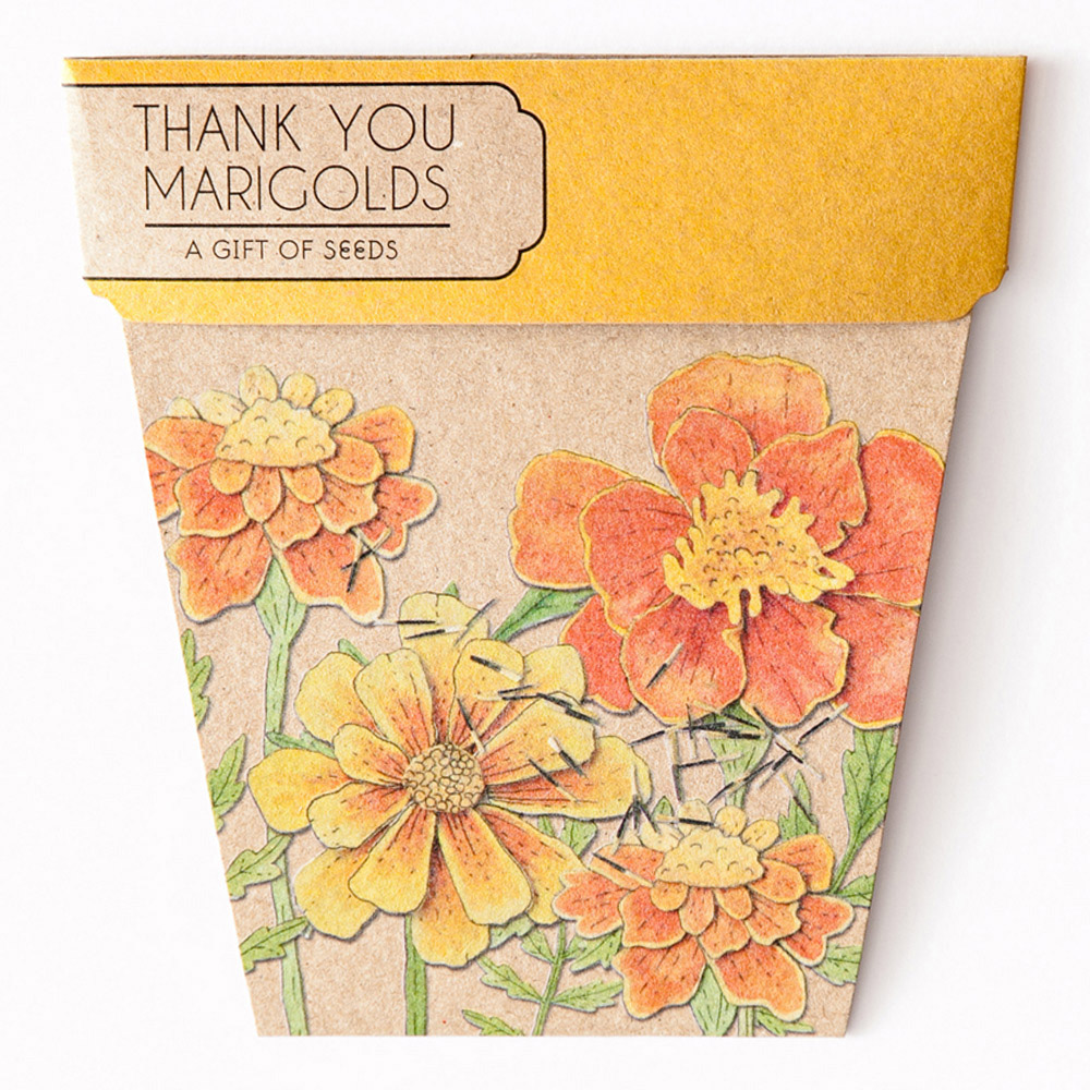 Marigolds - make a gorgeous gift for an October birthday person