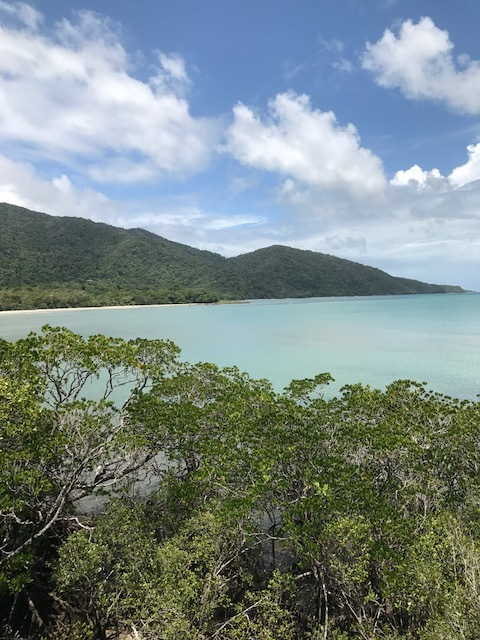 Best vegan and vegetarian friendly food in Daintree National Park and Cape Tribulation Queensland.