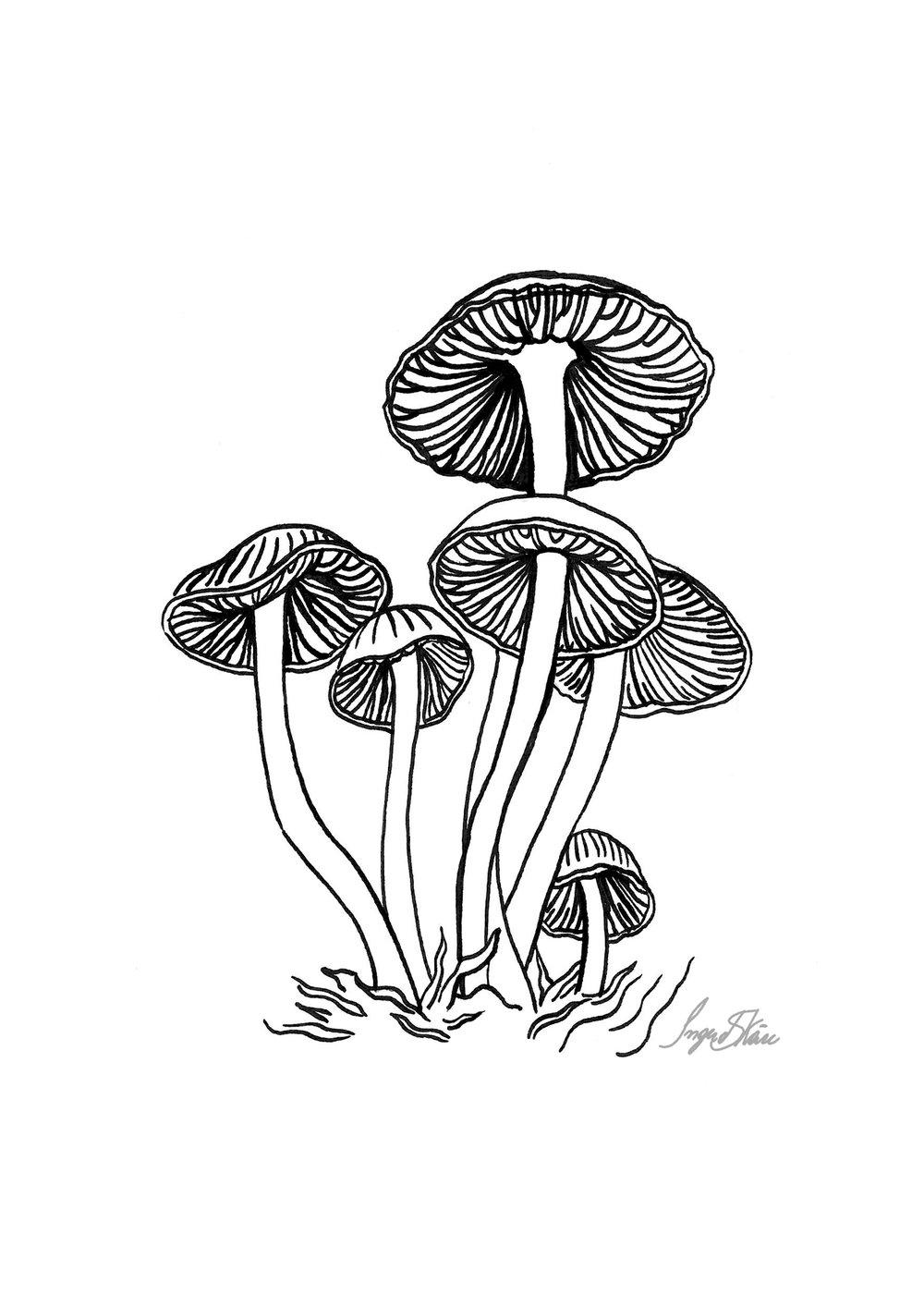 inktober-mushrooms-hatching.jpg
