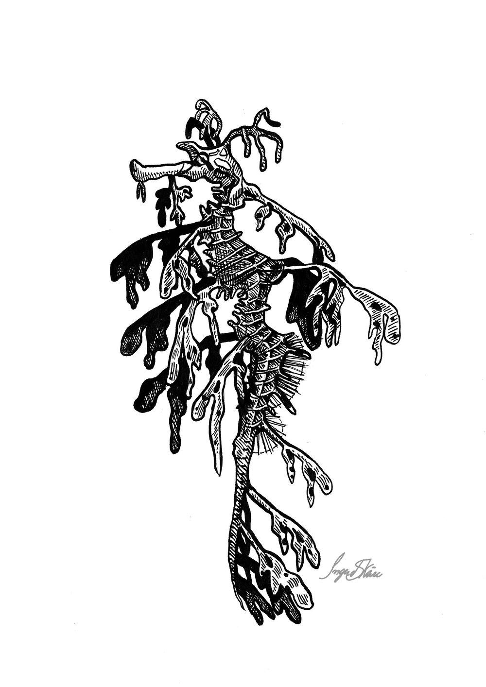 inktober-seadragon-hatching.jpg