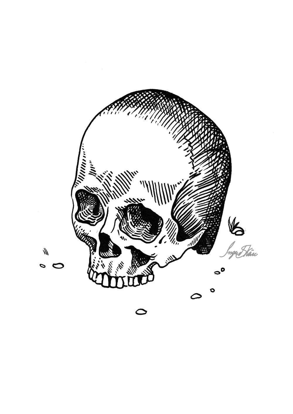 inktober-skull-hatching.jpg