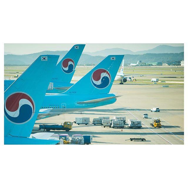 Some more Seoul 3/3 #ICN #boeing #747 #pepsi #koreanair #emptytrailer #southkorea