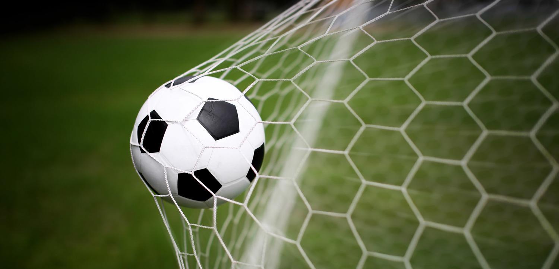 Garden Grove Indoor Soccer Soccer nla sports soccer ball in netg workwithnaturefo