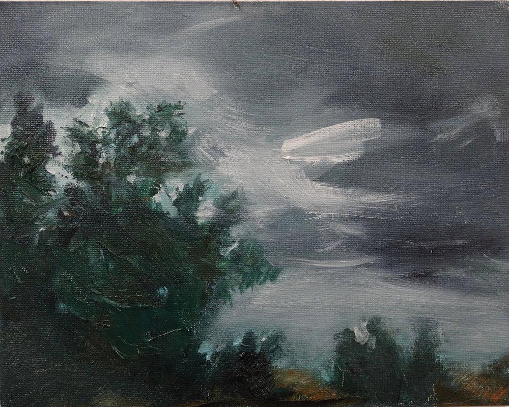 Storm (2016)