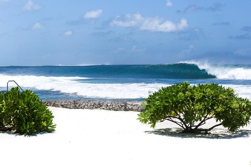 Kandooma surf.jpg