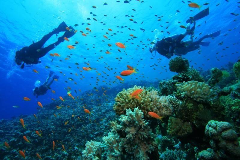 snorkeling_Fiji_maqai.com_.jpg