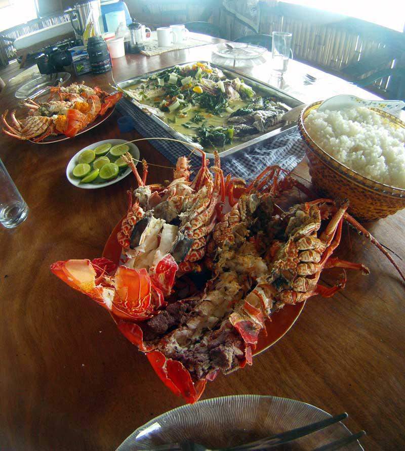 solomons-crayfish.jpg
