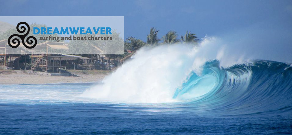surf special dreamweaver.jpg