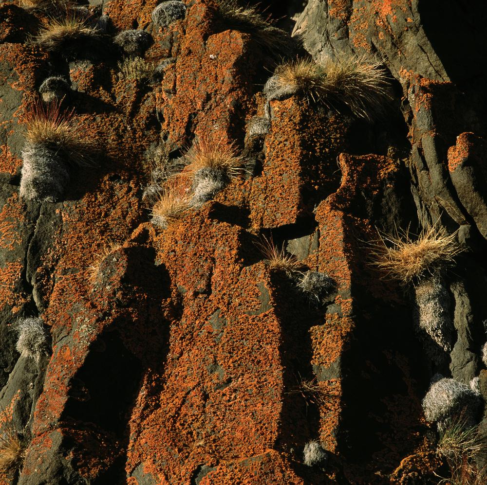 orange rocks.jpg