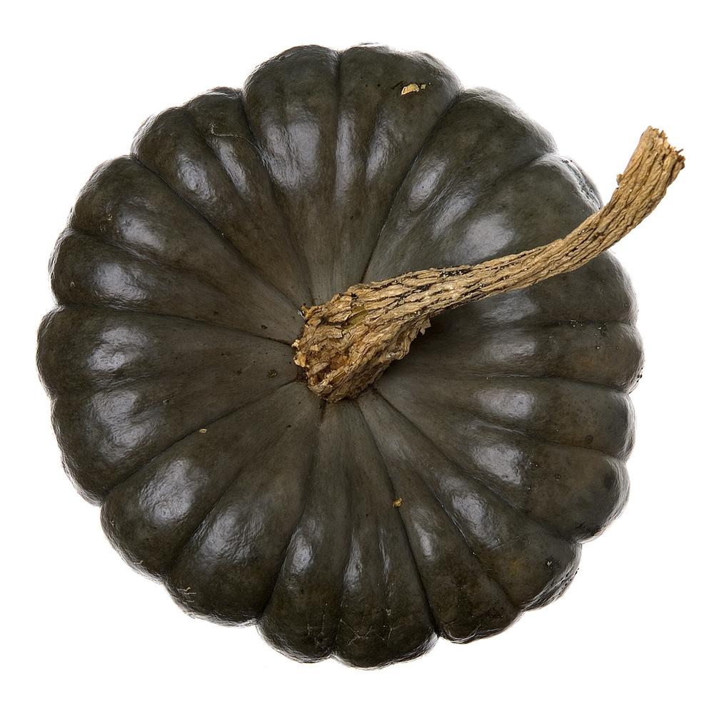 Gourd.0088.jpg
