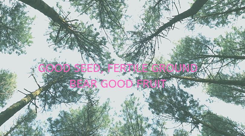 good seed, fertile ground bear good fruit (1).png