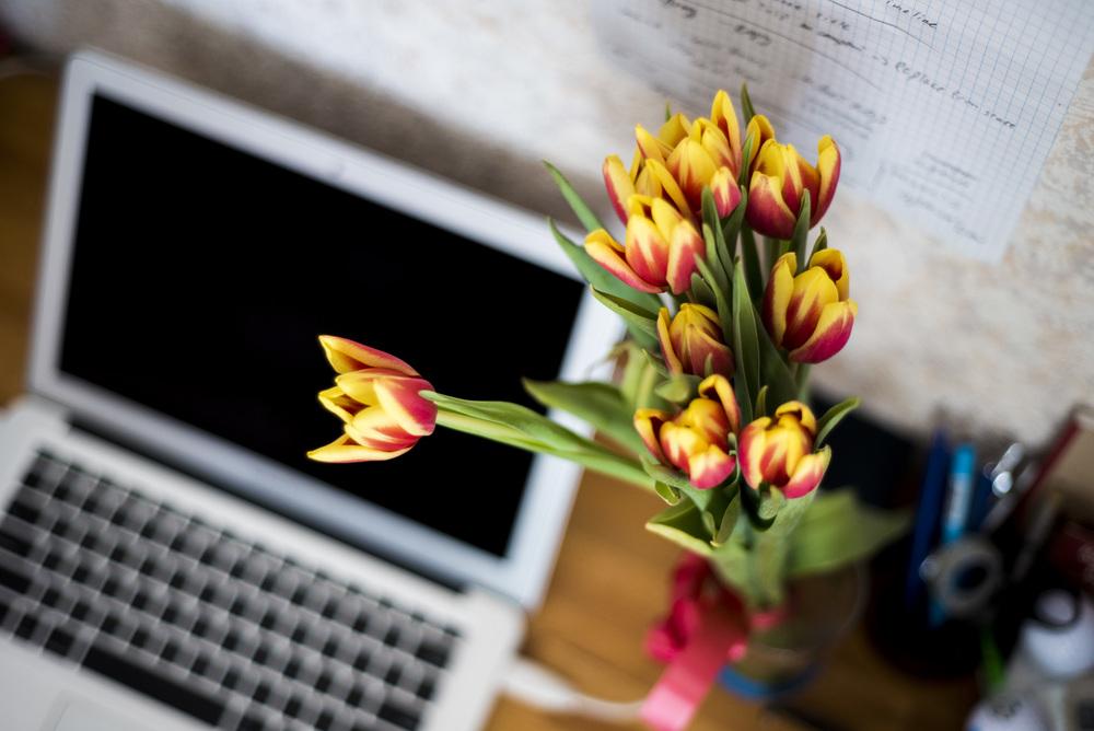 laptop_tulips.jpeg