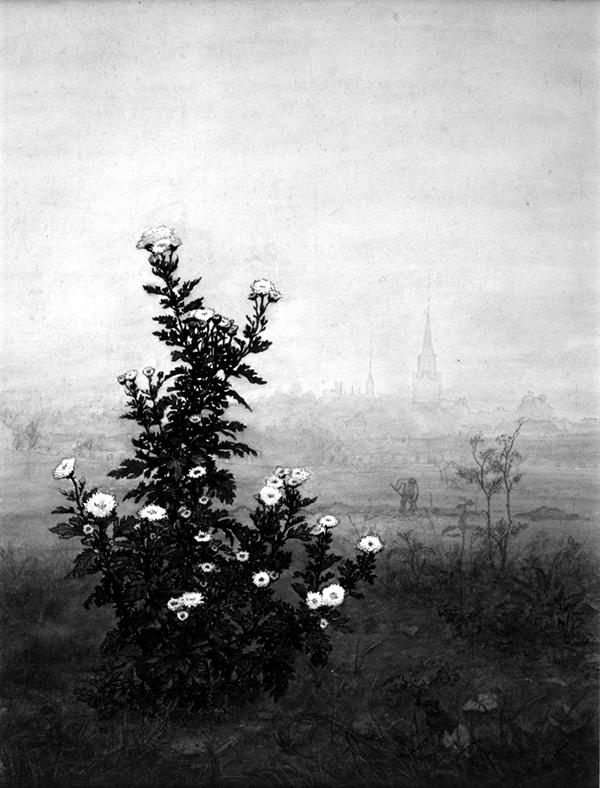 Léon_Bonvin_-_Flowering_Chrysanthemum_-_Walters_371518.jpg