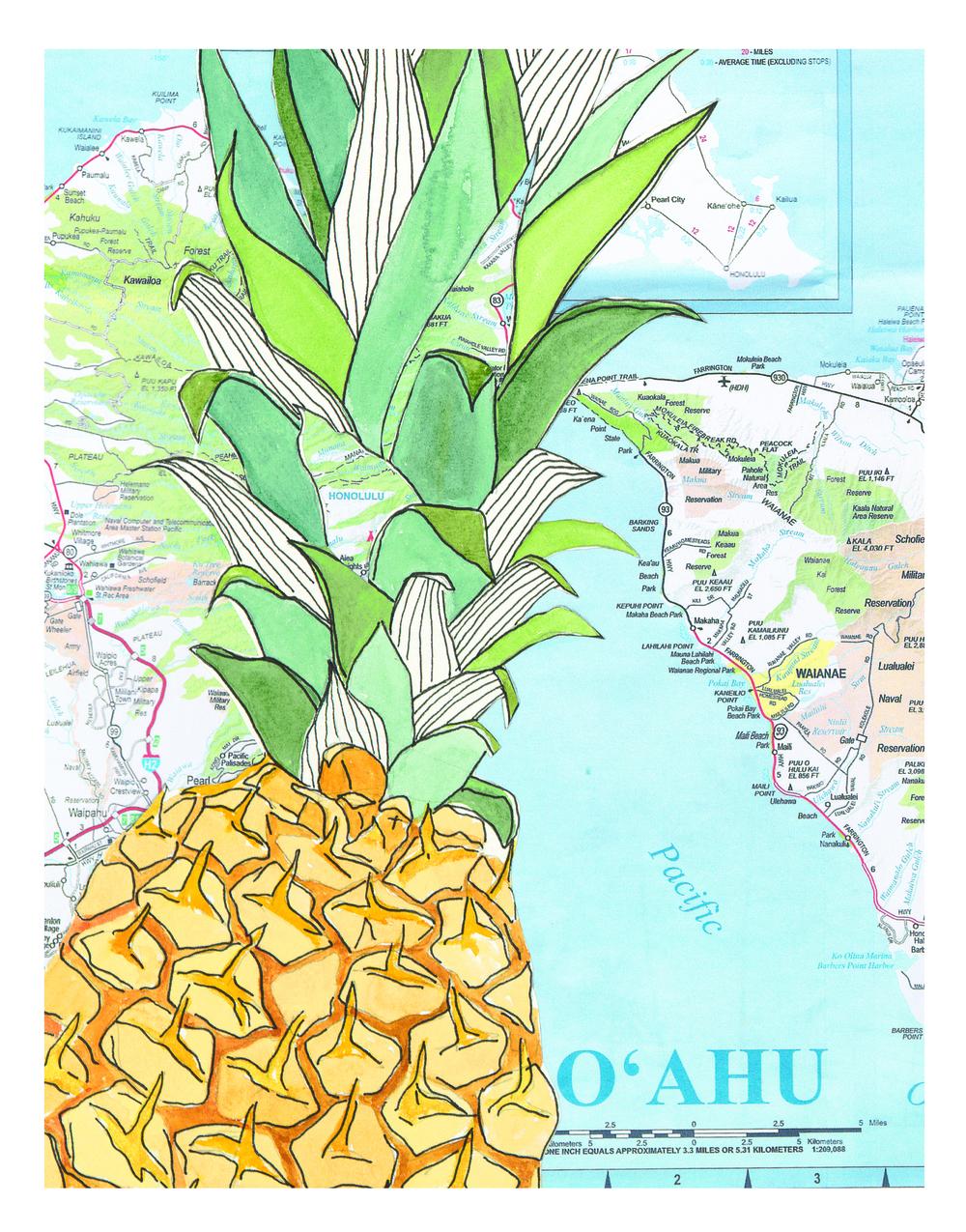 SARR_Pineapple