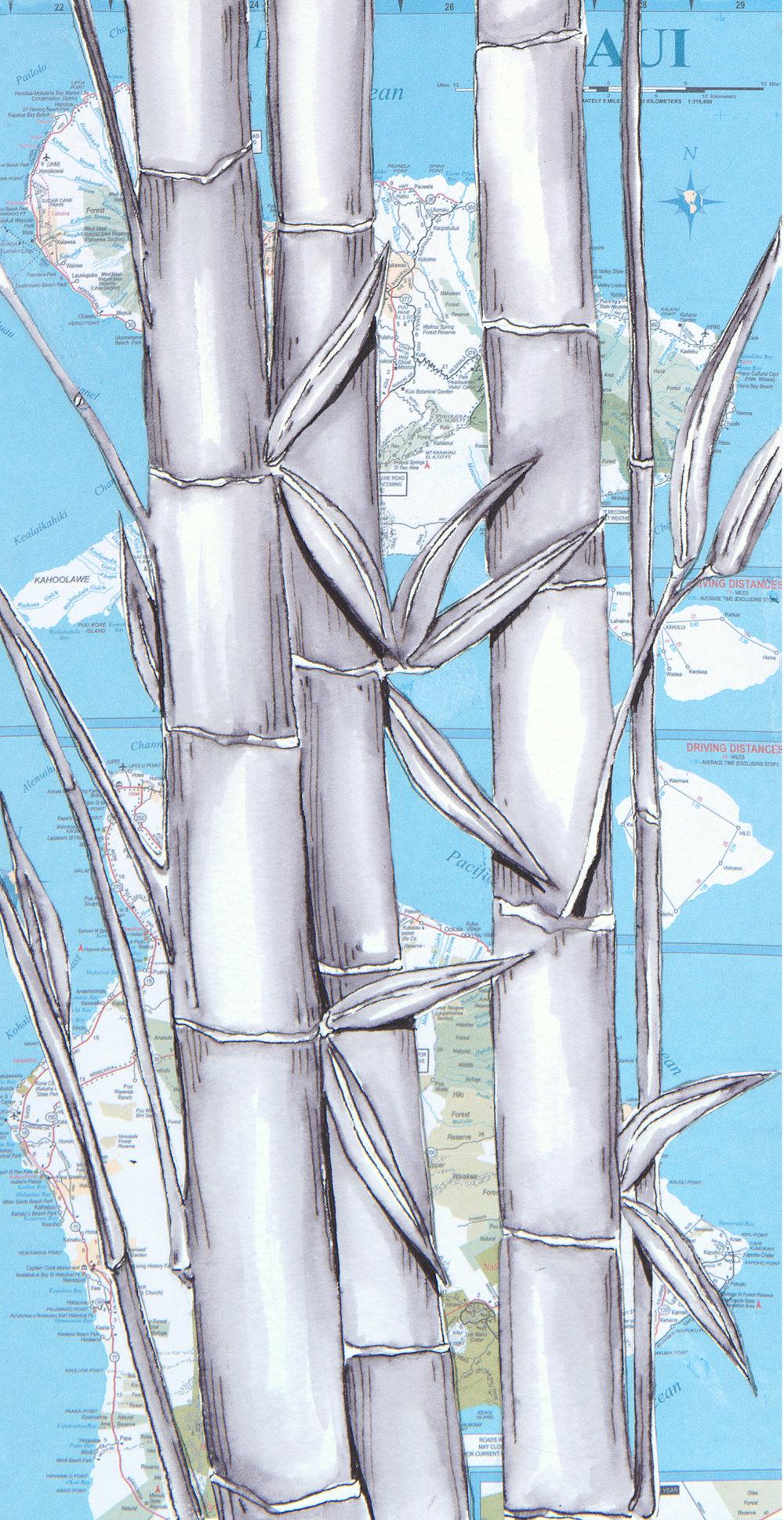Bamboo 2017