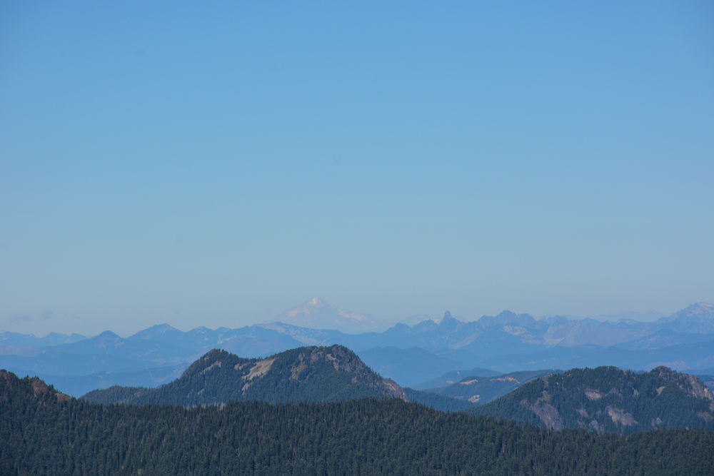 Mount Baker as seen from Spray Park at Mount Rainier