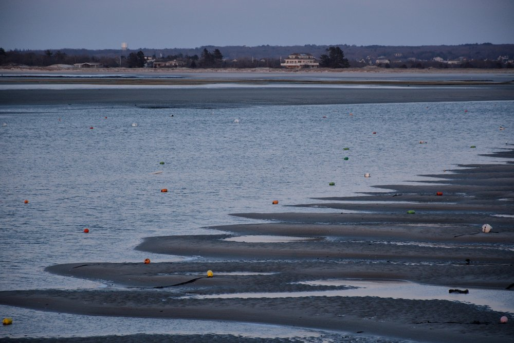 Winter buoys on the mudflats.