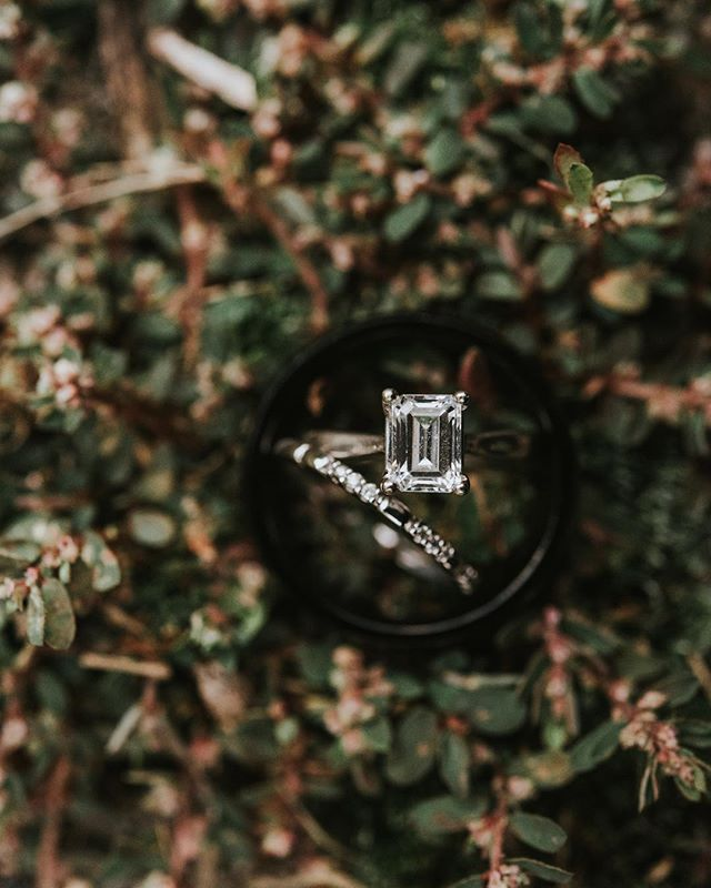 Love when I get to use moss in my #ringblingwednesday shots. 😍 . . . . . #skpbrides #pennsylvaniaphotographer #frederickphotographer #carlislephotographer #lancasterweddingphotographer #centralpaphotographer  #realbrides #realwedding #liveauthentic #postthepeople #momentsovermountains #fineartphotographer #fineartwedding #shesaidyes #theyregettingmarried #letsdothis #thatsdarling #soloverly #theknotpa #letsgetmarried #charming #details #communityovercompetition #bosslady #pursuepretty #weddinginspo #weddingphotographer #paweddingphotographer