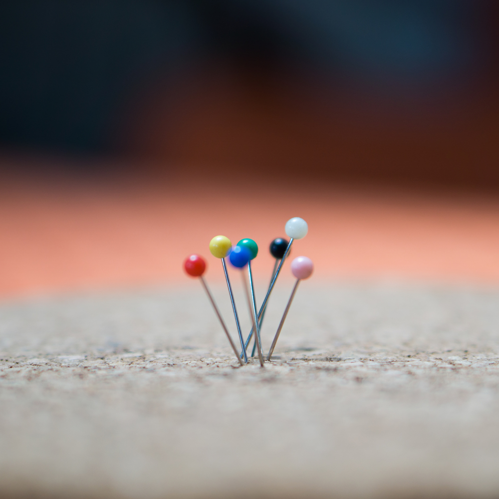 pins_crop.jpg