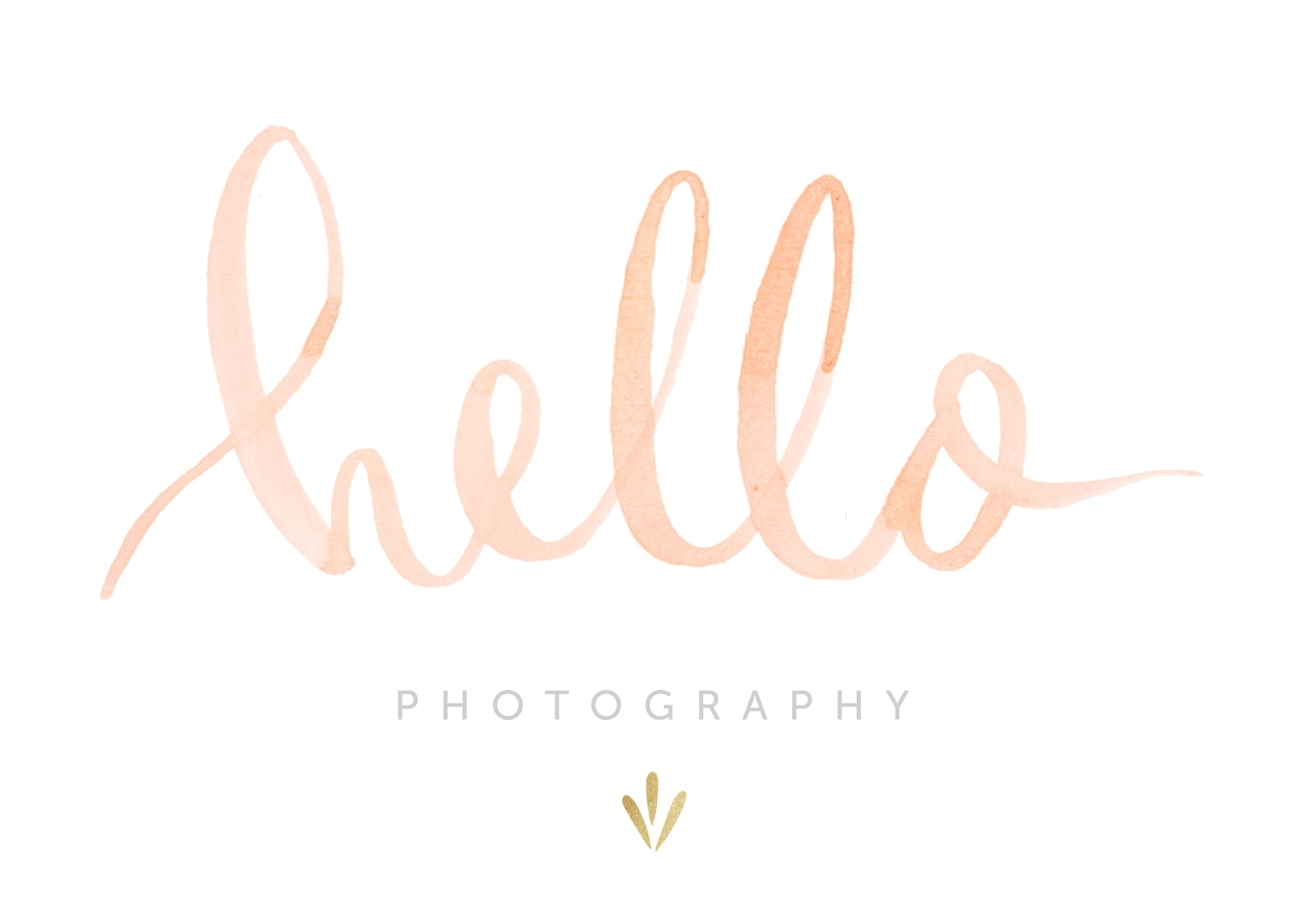 hello photography