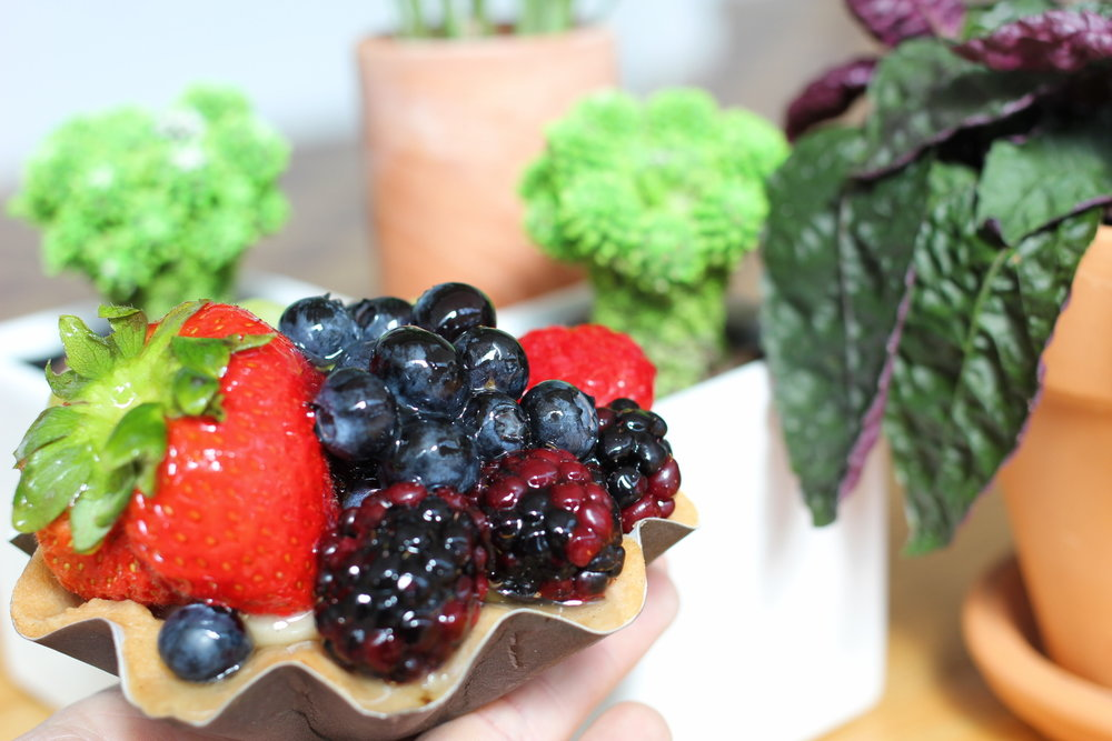 Humble Fruit Tart
