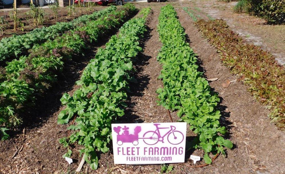 Fleet Farming 3.jpg