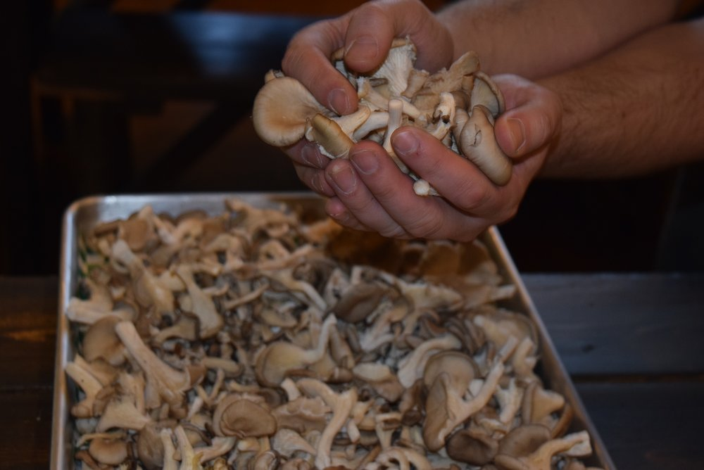 Preparing to add the Pacific NW Oyster Mushrooms