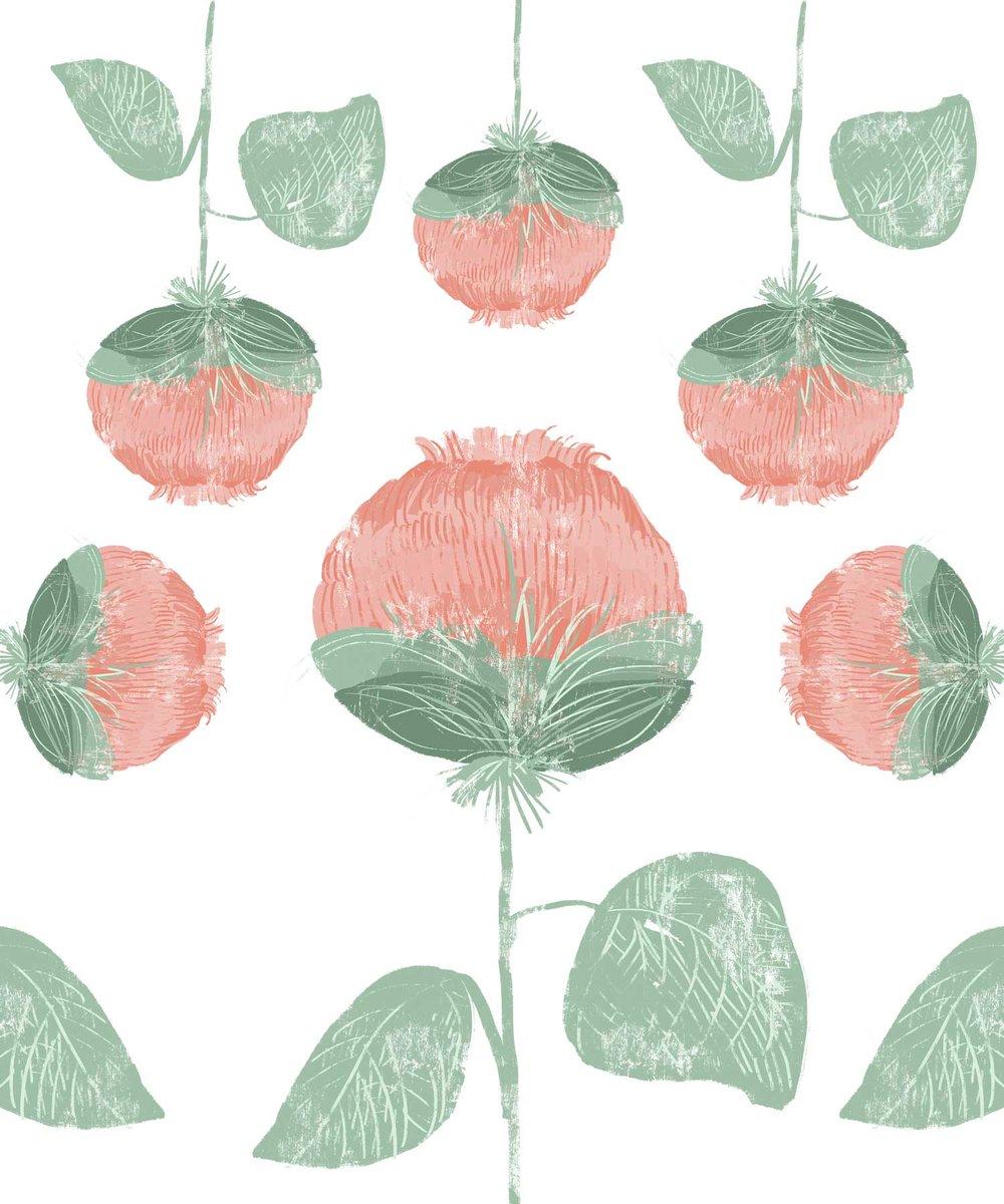 Plants34.jpg