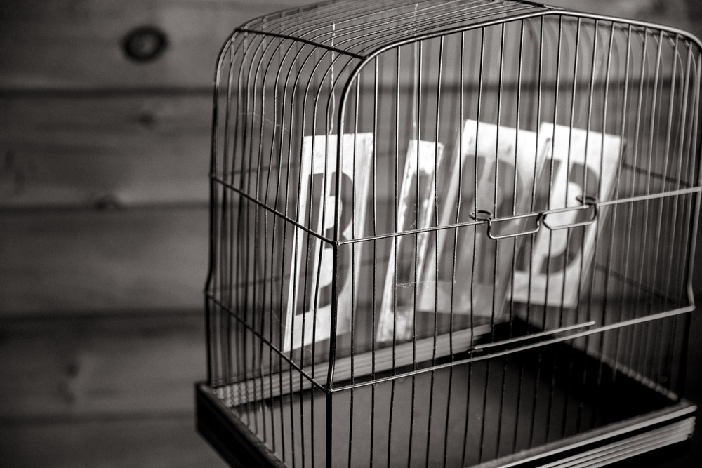 The word bird in an empty cage