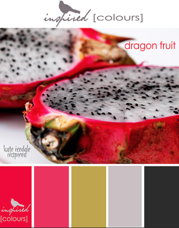 The Colours oDragon Fruit