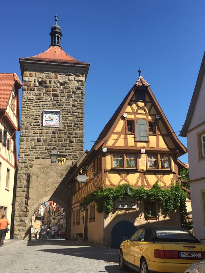 rothenberg5.jpg