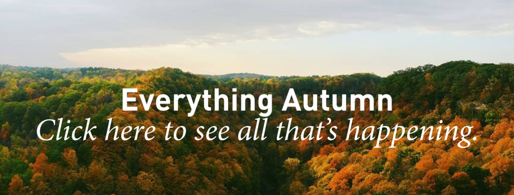 Everything Fall Images.002.png