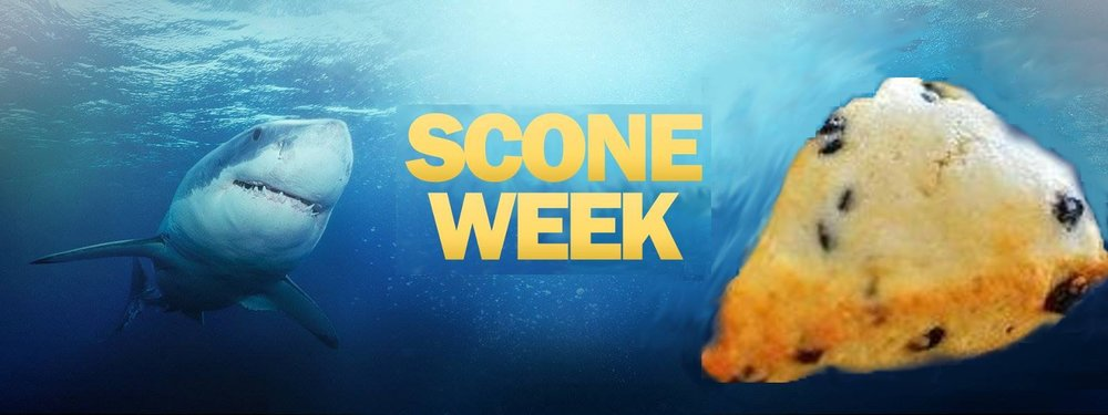It's SCONE WEEK at Hazel & Rye!  Every day we will be featuring a different scone to tempt you into the water. But you better be quick because the feeding frenzy is about to be fast. They are soooo good.  Downtown Canton: 7:30am to 2:30pm.