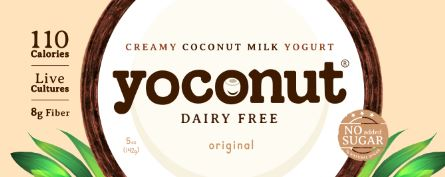 coconut yogurt, dairy free coconut yogurt