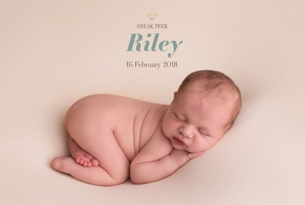 Riley SP 2.jpg
