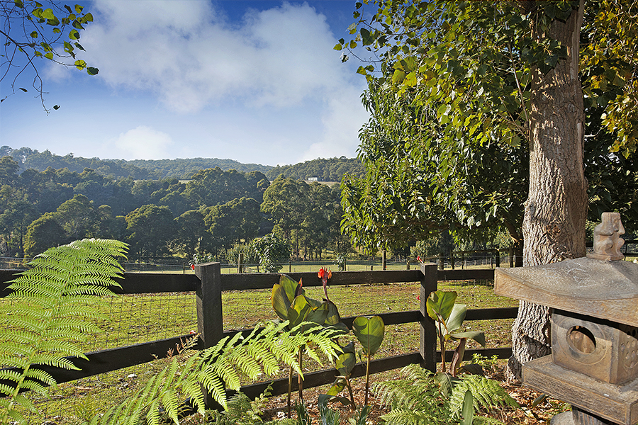 Emerald Ridge cottage view