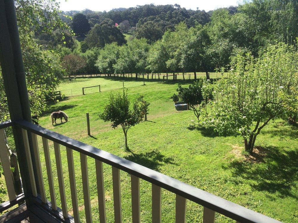Emerald Ridge orchard